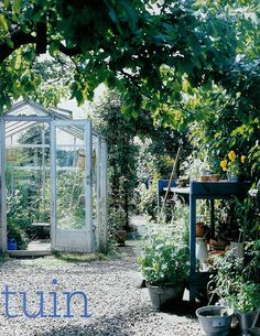 Lovely little greenhouse