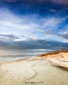 isolated beach sea oats footsteps in sand by photographybyVena, $30.00