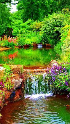 ROMANCE - Nature - المنتدى - Google+