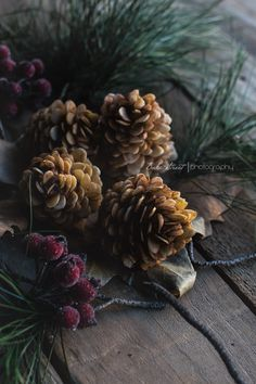 Marzipan pine cones with black chooclate and Cointreau truffle