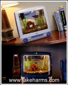 I think I have to do this with at least one of my (2) iMacs!    http://www.youtube.com/watch?v=lZQ_ZJFord4  http://lowendmac.com/compact/macquarium.shtml