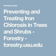 Preventing and Treating Iron Chlorosis in Trees and Shrubs - Forestry - forestry.usu.edu