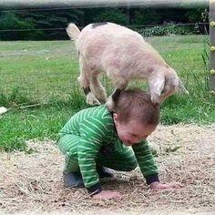 Trendy funny animals for kids happy Ideas Animals For Kids, Cute Baby Animals, Animals And Pets, Funny Animals, Funny Babies, Funny Kids, Cute Kids, Cute Babies, Beautiful Children