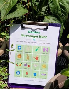 FREE printable Garden Scavenger Hunt - fun for toddlers, preschoolers, kindergarten & elementary ages!  Also includes ideas for outdoor STEM activities too. Counting For Kids, Summer Activities For Kids, Stem Activities, Outdoor Activities, Types Of Tomatoes, Scavenger Hunt For Kids, Stem Learning, Fruit Plants, Gardening Gloves