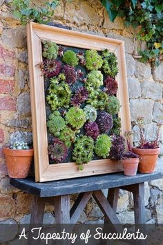 DIY Sukkulenten Wand Pflanzer Turn succulents into living wall art with this picture frame projects. Sempervivums, also known as hens and chicks, are the perfect drought-tolerant choice for this creative gardening project. This tutorial is an excerpt from Succulent Wall Planter, Succulent Frame, Diy Planters, Succulents Garden, Hanging Planters, Vertical Planter, Succulent Gardening, Succulent Display, Vertical Succulent Gardens