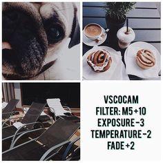 VSCO Cam Filter Settings for Instagram Photos | Filter M5 Dark Brownish Effect