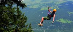 Seilpark mit Flying Fox - Eventidee in Savognin Park, Fox, Time Out, Adventure, Parks, Foxes