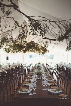 Branches collected and tied to the marquee with fairy lights threaded through them to look like stars.