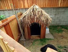tropical tiki dog house