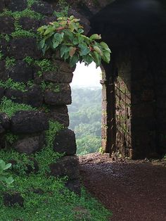 looking out of Chapora Fort - located in Bardez, Goa (the Fort rises high above the Chapora river) Beautiful World, Beautiful Places, Château Fort, Goa India, Photos Voyages, Secret Places, Jolie Photo, Garden Gates, Pathways