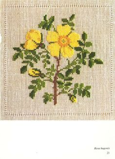 Gallery.ru / Фото #8 - Cross Stitch Pattern in Color - Mosca