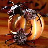 Edderkopper - Opskrifter  http://www.dansukker.dk/dk/opskrifter/edderkopper.aspx #kage #opskrift #inspiration #edderkopper #halloween #uhyggligt