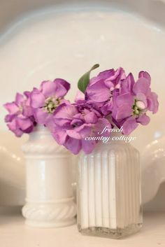 FRENCH COUNTRY COTTAGE: A Little S & P Shaker Charm