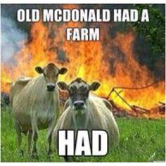 Old McDonald HAD a farm.