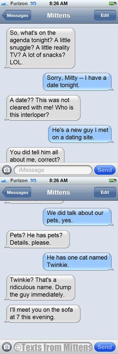 Daily Texts from Mittens: The Dump Him Edition