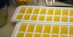 Pour éviter de laisser pourrir les citrons et que vous utilisez beaucoup de jus de citron, acheter un filet de citron extraire le jus et verser dans le bac à glaçon, quand ils sont congelé mettre dans un sac de congélation ou mettre directement dans un sac à glaçon