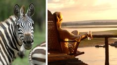Best African Safari Tours - Mara, Serengeti & Selous Safari