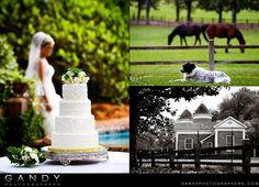 Plantation wedding - Pebble Hill Plantation, Thomasville, GA