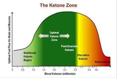 how to make endogenous ketones at home   optimising nutrition
