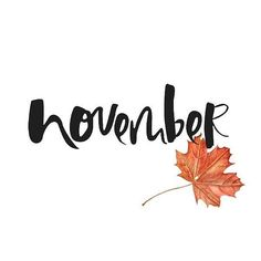 Hello November! The last month of autumn but the beginning of a new adventure; time to take risks and do the unexpected. #quoteoftheday