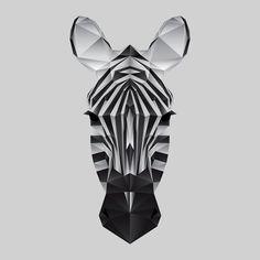 Zebra by  Nacho Gil