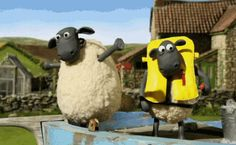 pics sheep shaun shaun the sheep movie