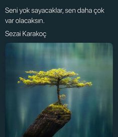 #mınmınik Crazy People, Good People, Maybe Tomorrow, Carl Sagan, Inner Peace, Historian, Benjamin Franklin, Northern Lights, Writer
