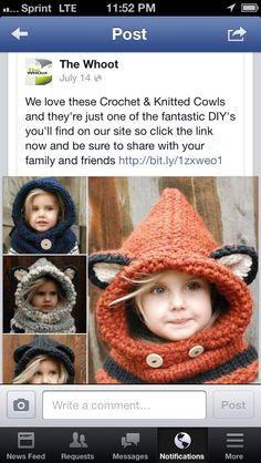 Still Liking The Fox Crochet And Knitted Hooded Cowl