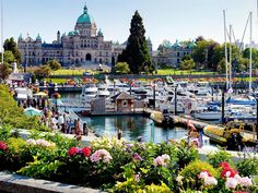 15 Things to Do in Victoria, British Columbia, Canada - Styled to Sparkle Vancouver British Columbia, Victoria British Columbia, University Of British Columbia, Victoria Island Canada, Victoria Vancouver Island, Au Pair, Vancouver Wallpaper, University Of Victoria, Summer Vacation Spots