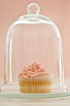 Durch meine Adern fliesst Buttercreme. Und wenn ich diese Cupcakes sehe, dann kann ich mich kaum noch halten! Lemon-Cupcakes mit Himbeer-Buttercreme!
