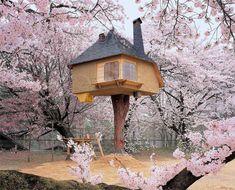 Impresionantes casas del árbol en el mundo