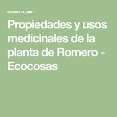 Propiedades y usos medicinales de la planta de Romero - Ecocosas