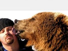 For The Love Of Rugby Bears Bromance Pinterest Rugby - Guys best friend bear cutest bromance ever
