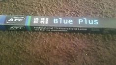 Two ATI 24 Inch 24W Blue Plus T5HO Fluorescent Bulb lot buy corals frags marine