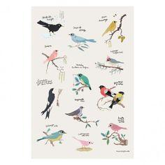 Tinou Le Joly Sénoville Birds Poster  Poisson Bulle