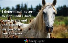 I determined never to stop until I had come to the end and achieved my purpose. - David Livingstone