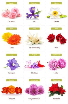 Different flowers to represent different birthdays!