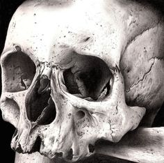 Skull Art By: Lhayton #hyperrealistic #art #drawing