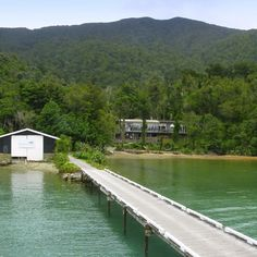 Queen Charlotte Sound, Malborough, South Island, New Zealand