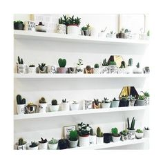 WHI | Get lost in what you love ❤ liked on Polyvore featuring home, home decor, cactus home decor, get lost and white home decor