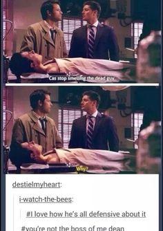#Supernatural Castiel & Dean xD, well..Dean kind of isn't. :P - The wolf that kills