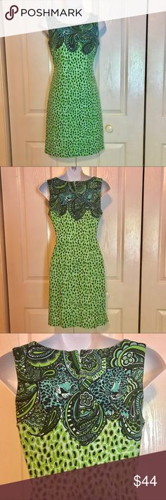 Lilly pulitzer dress Master of the House . Kelly green Lilly pulitzer shift dress. Leopard print. Lilly Pulitzer Dresses