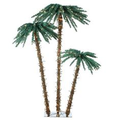 Sterling 5208-3556c 3.5-Feet, 5-Feet and 6-Feet Pre-Lit Palm Tree Clear Lights ** Read more reviews of the product by visiting the link on the image.
