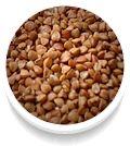 Choco Lite Pan Comido, Dog Food Recipes, Food And Drink, Biscotti, Ps, Sport, Happy Women, Face Creams, Split Peas