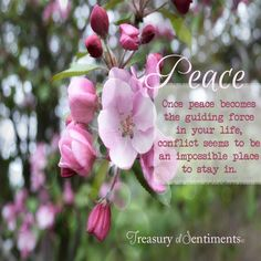 Peace quote via www.Facebook.com/TreasuryofSentiments