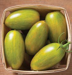 Green Tiger (OG) Tomato Seeds