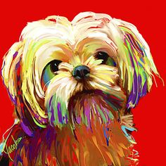 Abstract Yorkie Painting - Shih Tzu-yorkie - Hogan by Jackie Jacobson