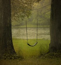 Down on the riverbank is a swing. It must be for human children since it's too high for fairies, elves or gnomes.