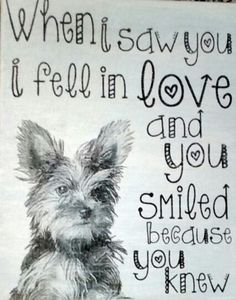 Yes I did! Love my 2 furkids!