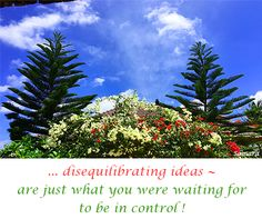 ... disequilibrating ideas ~ are just what you were waiting for to be in control !